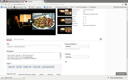 The Youtube video info editing window